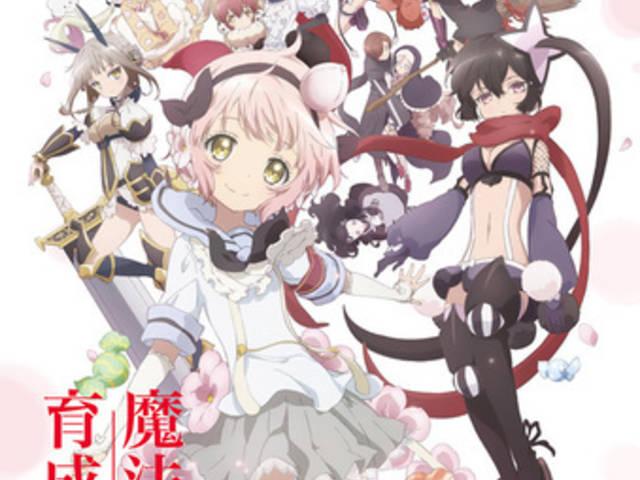 アニメ魔法少女系列人気投票