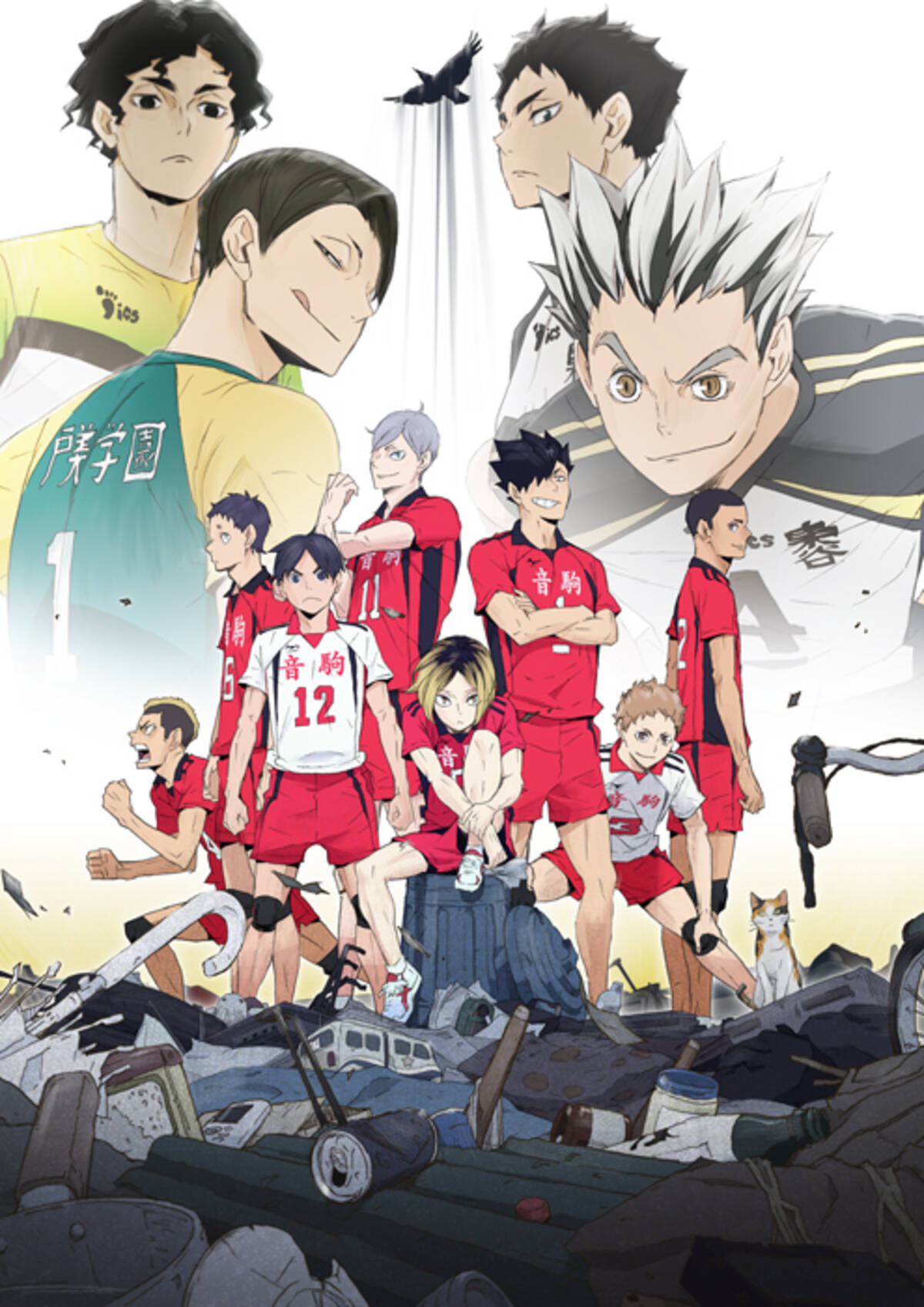 Tvアニメ ハイキュー 第4期2020年1月放送開始 最新シリーズova